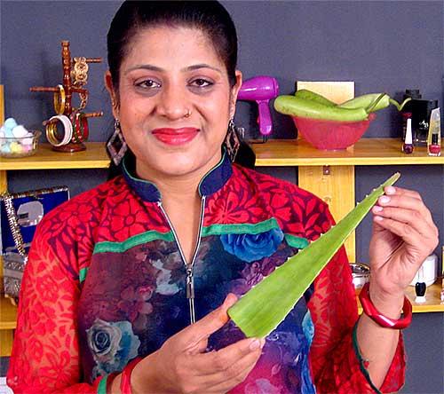 3 Herbal Shampoo Recipes in Hindi - Jaipur The Pink City