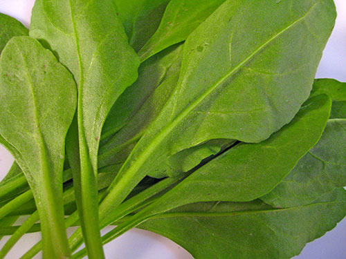 Health Benefits of Spinach In Hindi