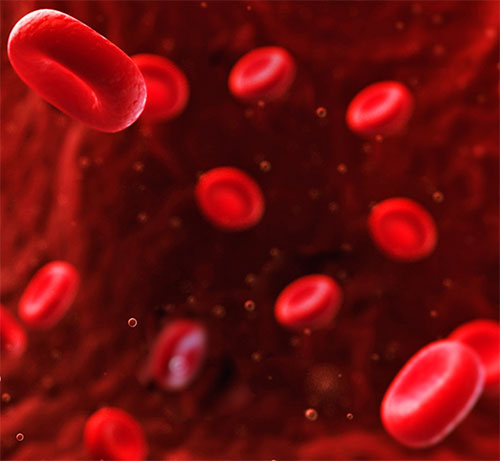 Anemia Treatment In Hindi