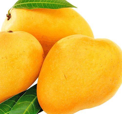 Health Benefits of Mango In Hindi